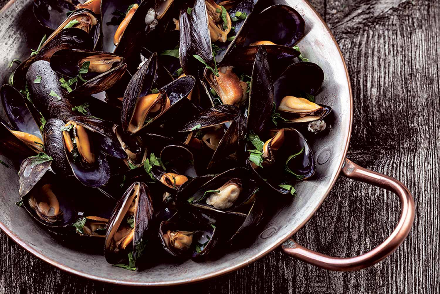 Fox and Goose – Mussels
